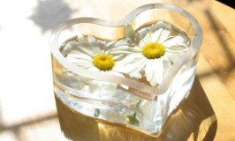 Flowers in a Heart Shaped Glass Vase