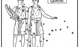 Zodiac Sign Gemini The Twins